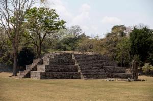 Site_1173
